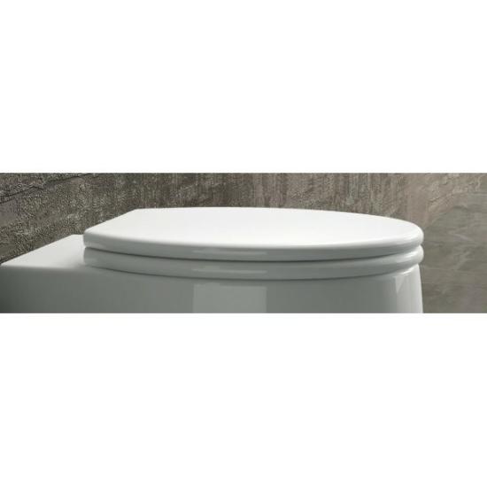 Arezzo design California Soft Close lecsapódásgátlós wc tető